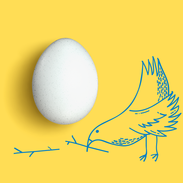 Bird And Single Egg with yellow background