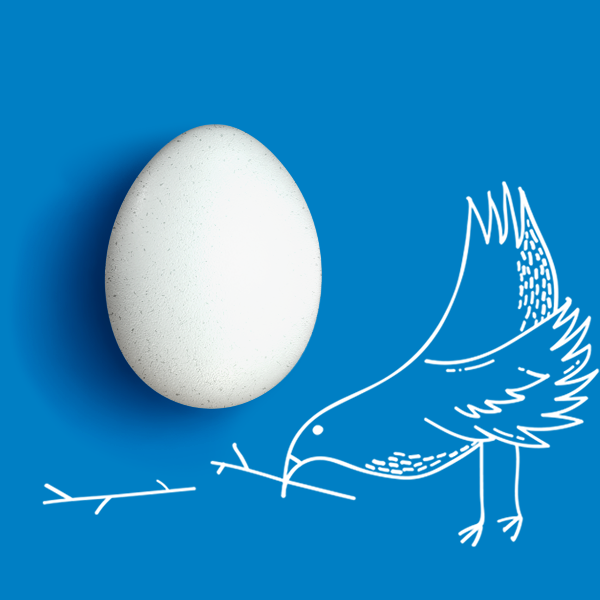 Bird And Single Egg About Us 700Px X 700Px V10 Blue