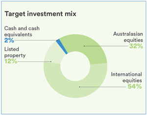 Socially Responsible High Growth Fund Pie Graph